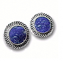 Special Design Post or Clip Earrings