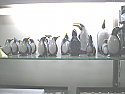 Lapis Lazuli, Marble and Bronze Pinguin Figures